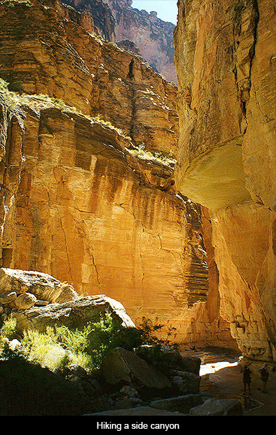 Friday Voyage Grand Canyon New Mexico Mercury